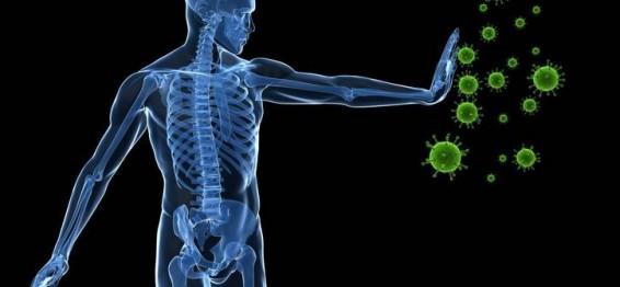 Подсилете имунитета, през зимните месеци!